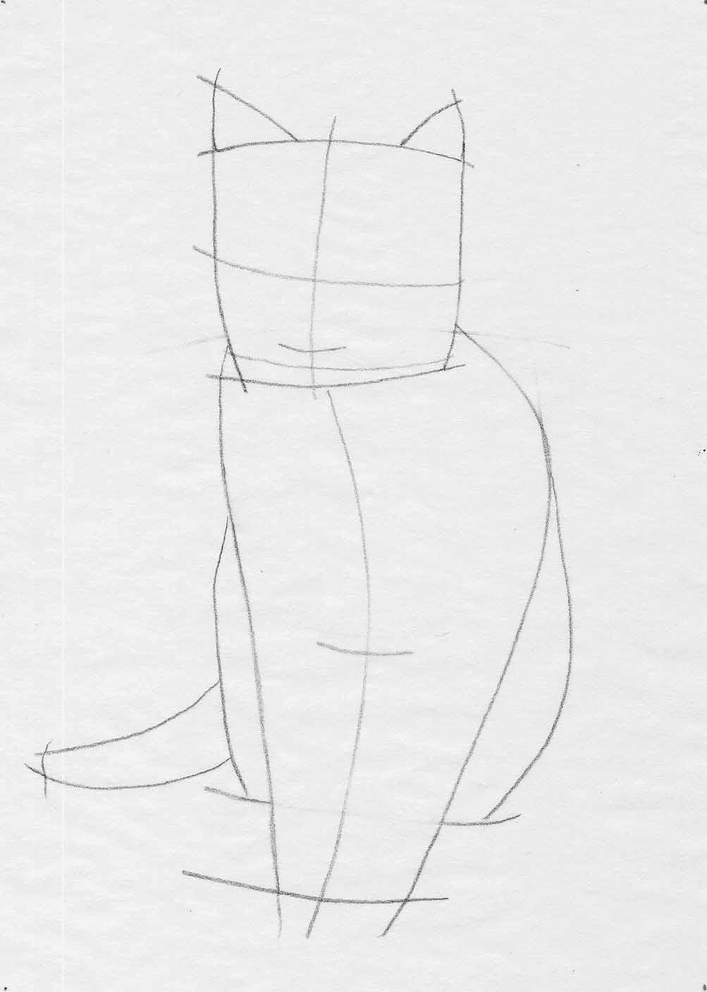 How to Draw Cartoon Cats